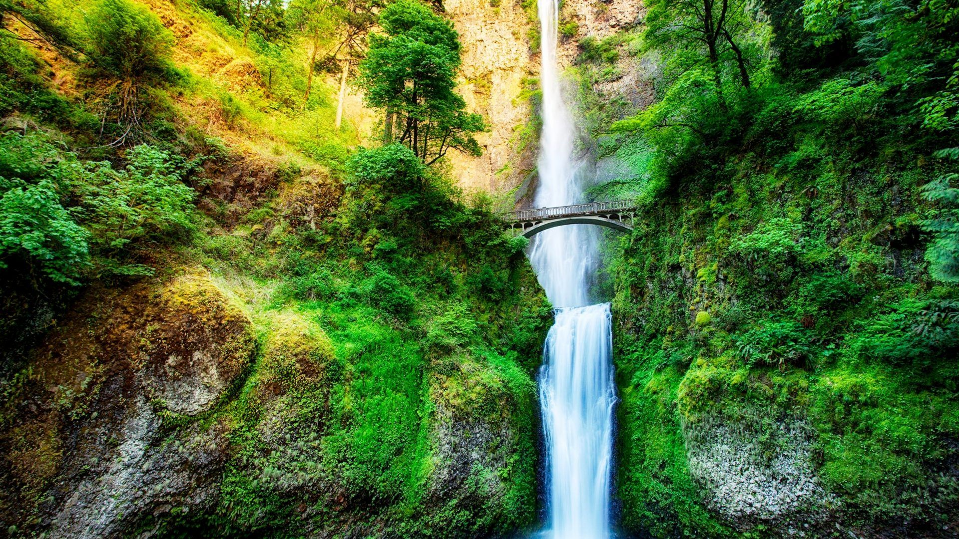 Waterfalls wallpapers Page 6: Mountain Waterfall Grass Lake Stream ...