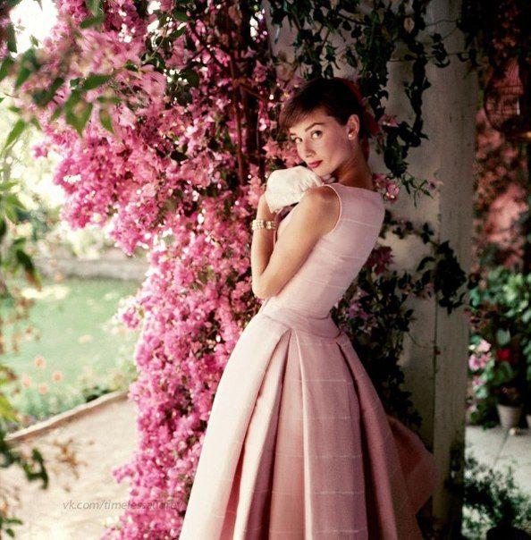 Фотографии Timeless Audrey Hepburn/Одри Хепберн   Audrey Hepburn ...
