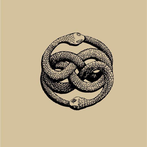 Exemple Dessin Pour Tatouage Femme Infini Serpent Ananta Drawing
