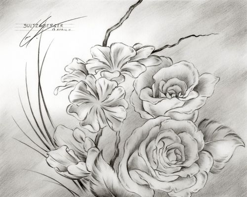 Pencil sketches of flowers flower drawing 16 large view