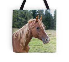 ein braunes Pferd Tasche