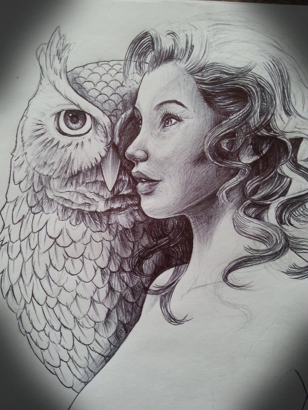 Girl And Owl Tattoo Design By Mickmog Traditional Art Drawings