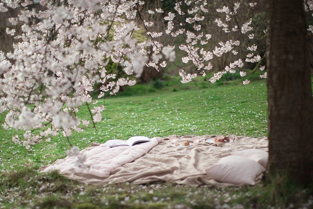Is Balance Always Worth Striving For Pink Blossom Tree My Fairy Garden Fairy Garden