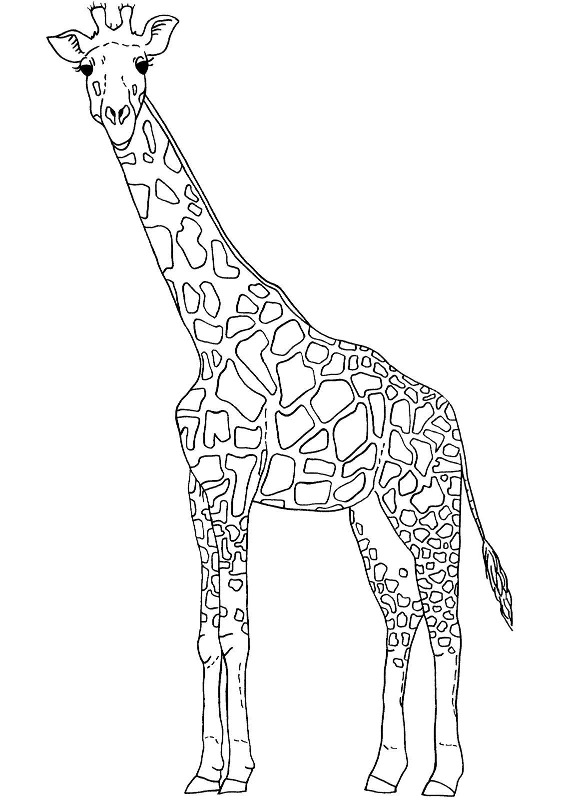 Found On Bing From Clipart Library Com Outline Pictures Giraffe Coloring Pages Giraffe Colors