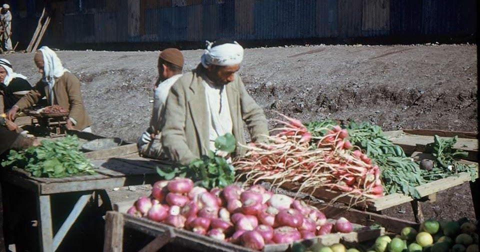 Sebze Ve Meyveler Gri Arka Plan Uzerinde Sayuran Buah Latar Belakang