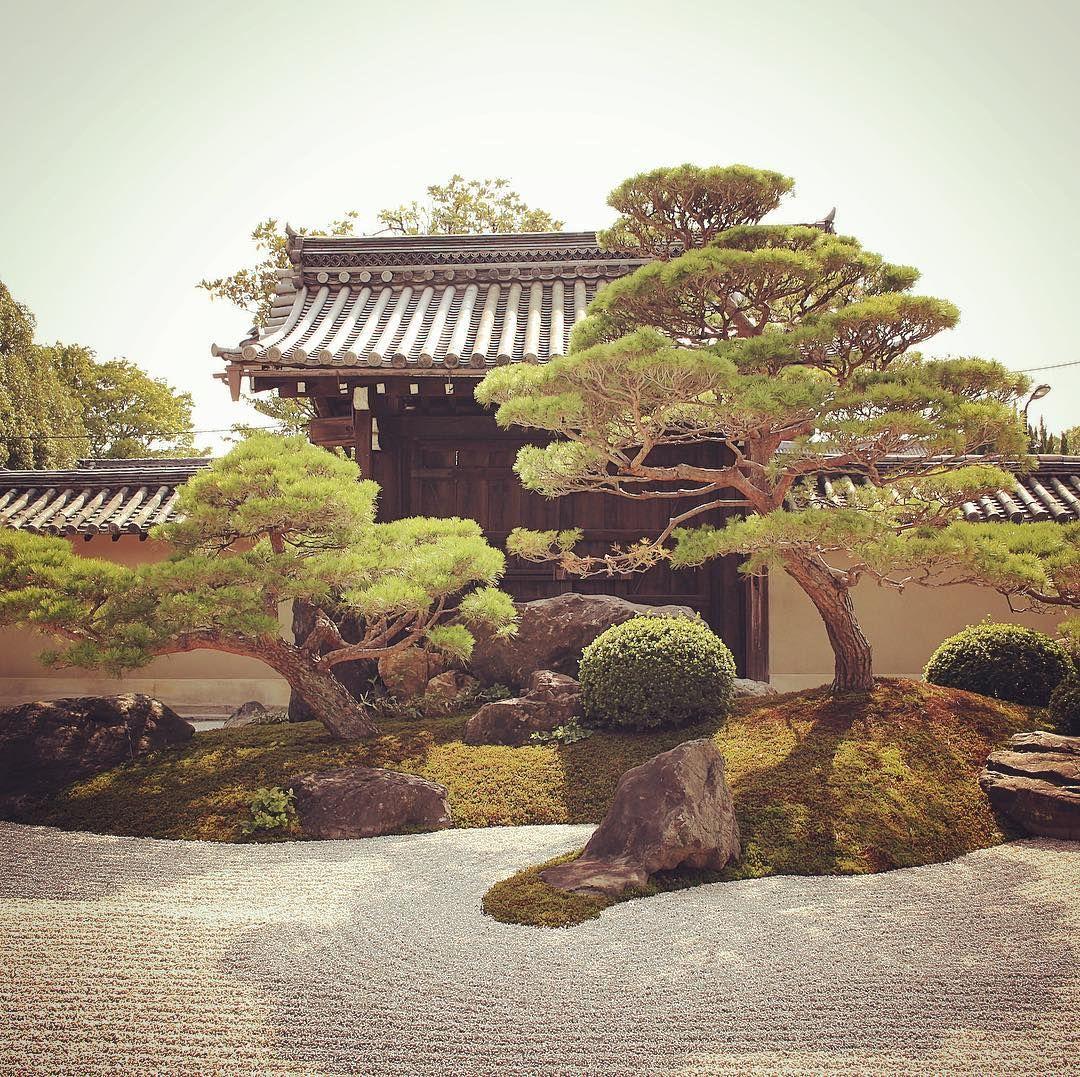 No.822 at Kanchiin, Toji Temple, Kyoto, Japan Pine tree can also be ...