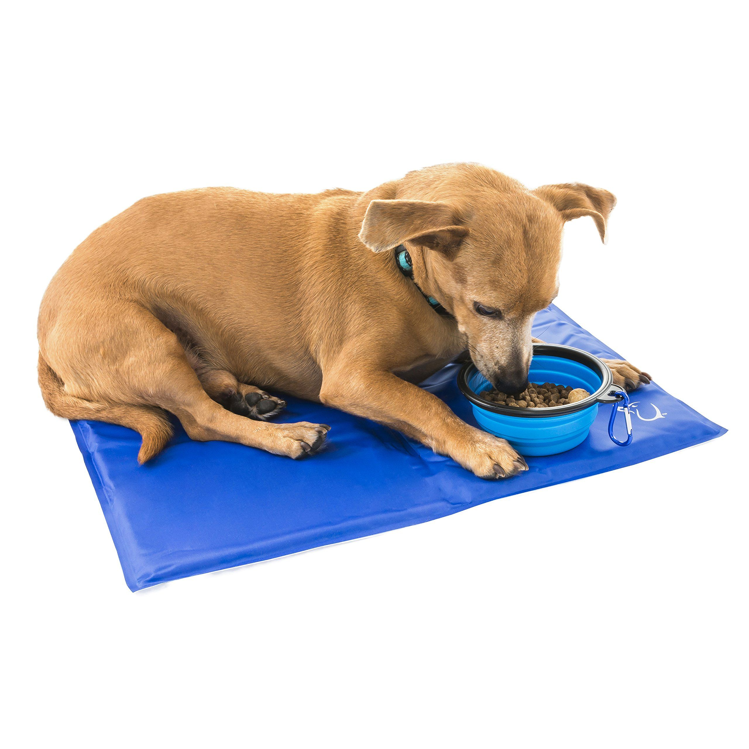 Unleashed Pets Self Cooling Pressure Activated Pet Cooling Gel Pad Mat Collapsible Food Bowl For Dogs Cats All Pets Nontoxic Cat Bed Pet Bed Cooling Gel Pad