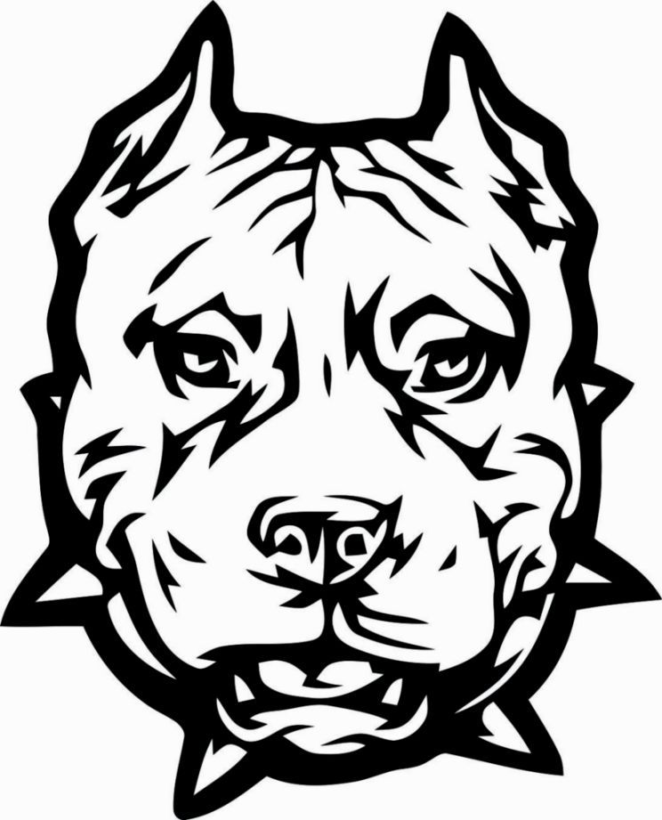 Pitbull Coloring Pages Dog Coloring Page Dog Coloring Book Pitbull Tattoo