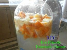 DIY Eco-Friendly Enzymatic Cleaner & Citrus Insect Spray