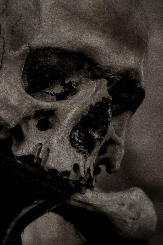 Human Jaw Tattoo: Pin By Diane Munoz On All Things Skull ( Memento Mori