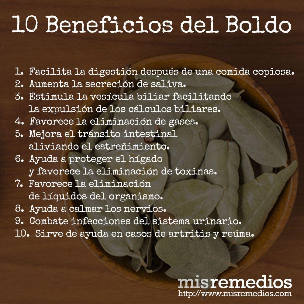 Beneficios Del Boldo Medical Herbs Herbs For Health Health And Nutrition