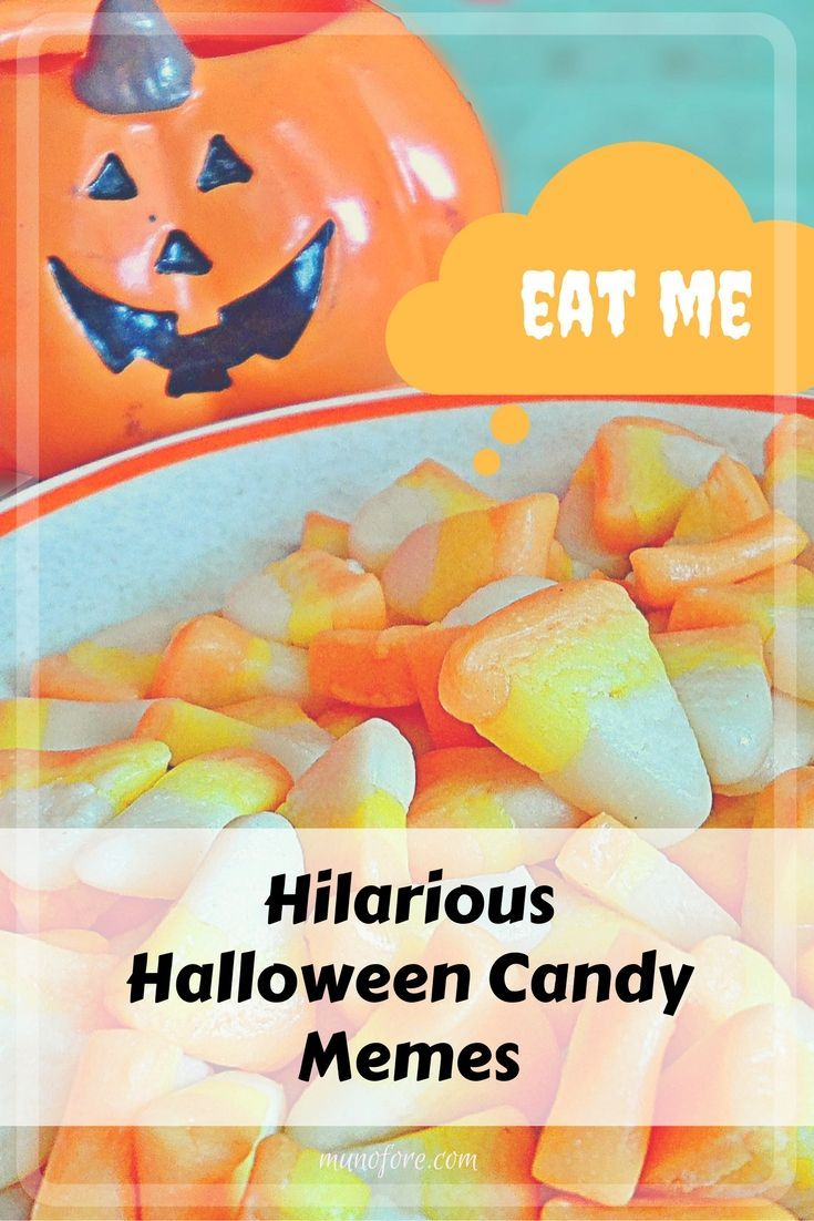 hilarious halloween candy memes plus friday frivolity | halloween