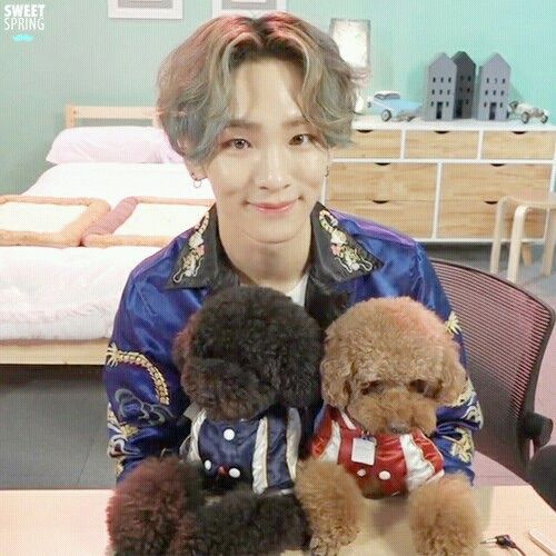 Image Via We Heart It Cute Dogs Handsome Idol Key Kpop Shinee Kimkibum Shinee