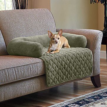 Plush Pet Cover With Bolster Large Contemporary Accessories By Improvements Catalog