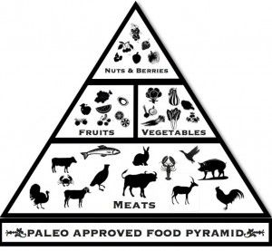 a-beginners-guide-to-paleo