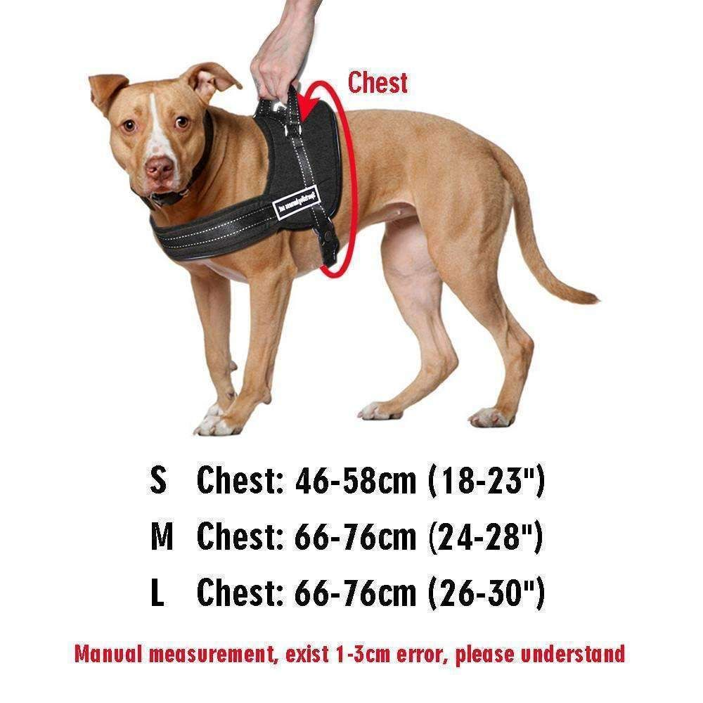 Looking For A Versatile Training Harness That Looks And Feels Too