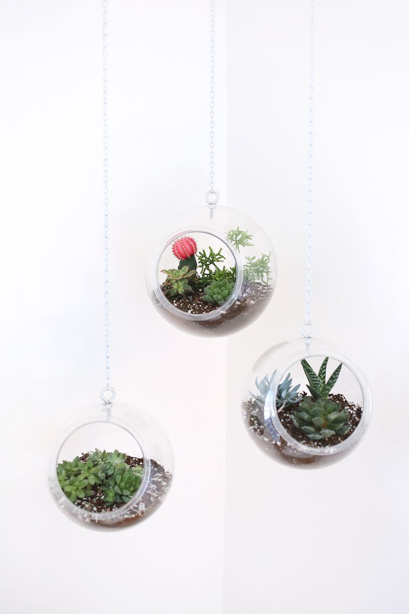 Hanging planter made with plastic fishbowls home inspo
