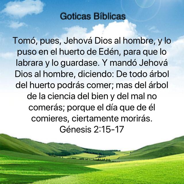Pin De Myriam B En Salmos Jehova Dios Biblia Dios