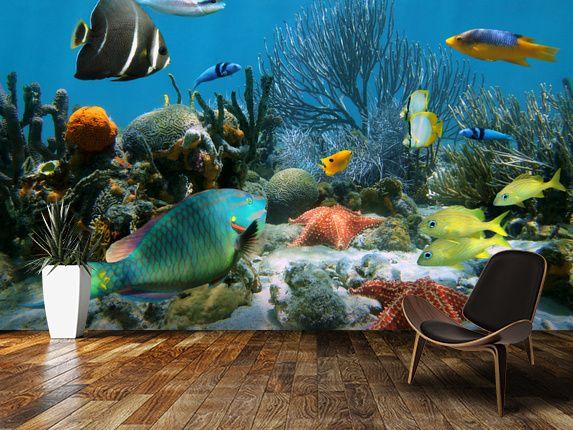 Coral Reef Wallpaper Wallsauce Us In 2021 Ocean Mural Mural Wall Art Wallpaper