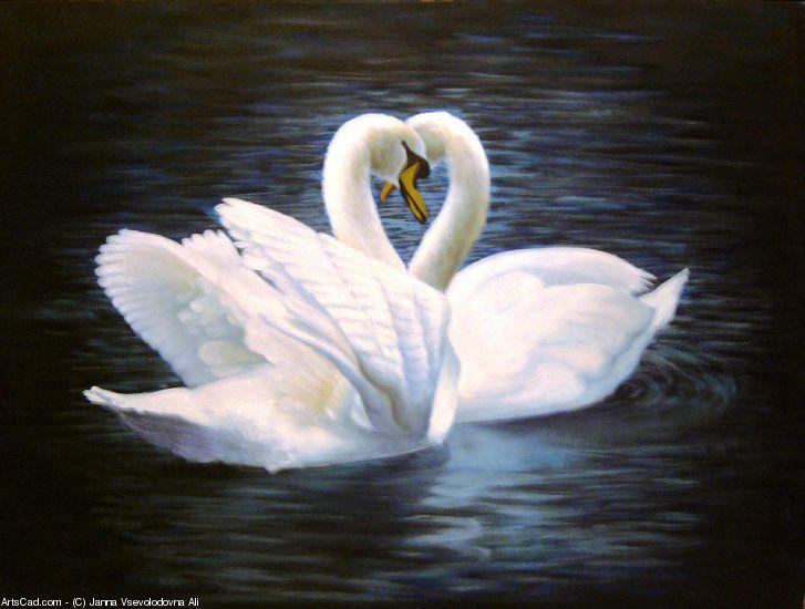 Artwork >> Janna Vsevolodovna Ali >> Swans