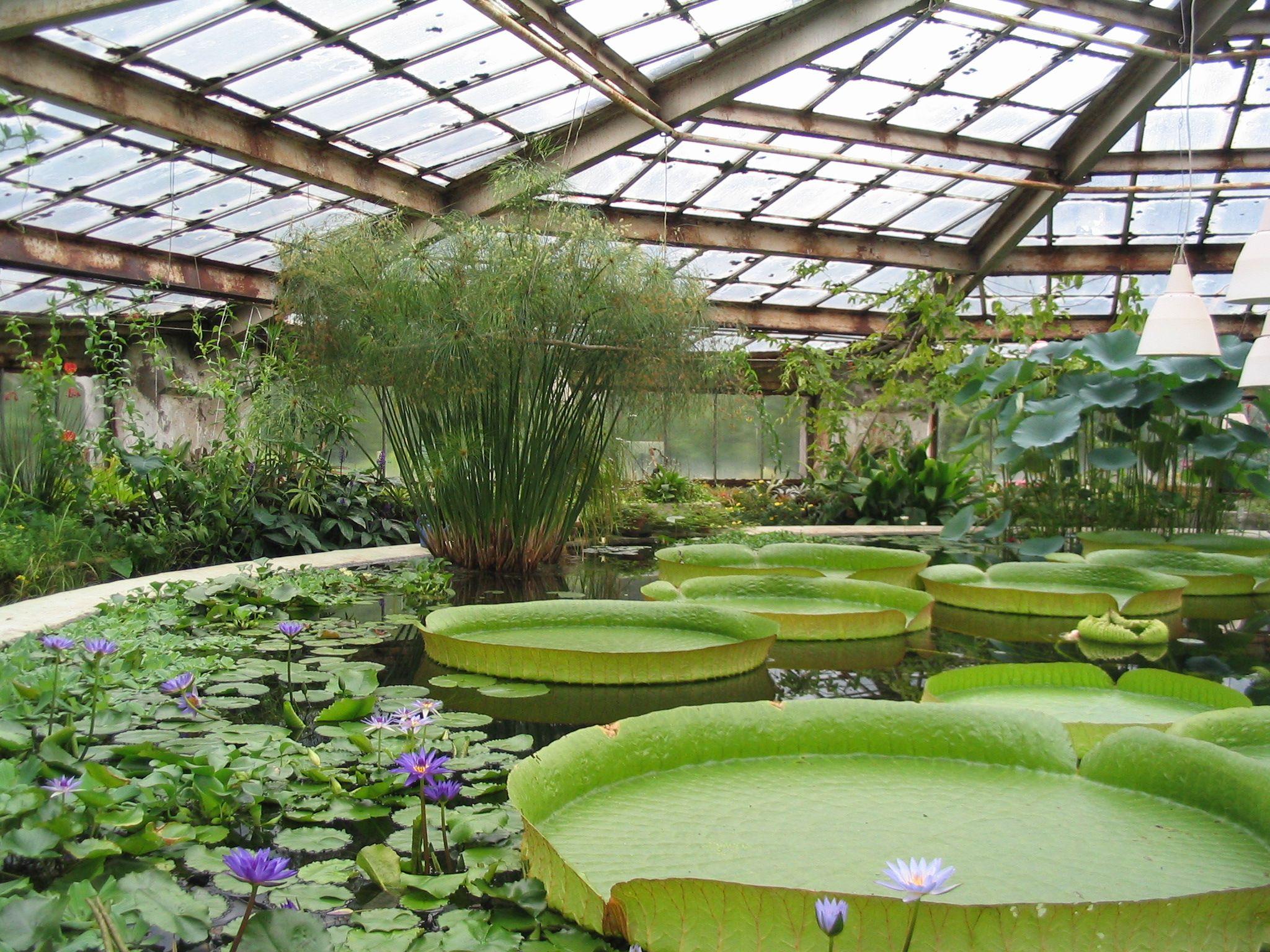 Superb Botanic Garden Design   Google Search