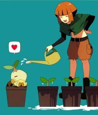 Gardenia And Turtwig Pokemon Characters Pokemon People Pokemon