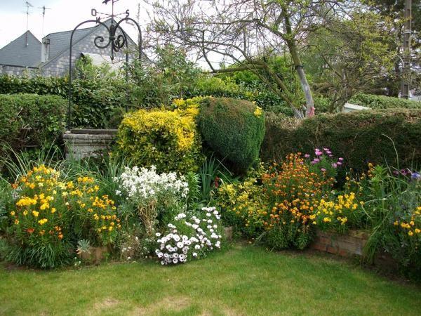 Jardin de ville, massif fleuri : giroflée, rosier, iris, alysse ...