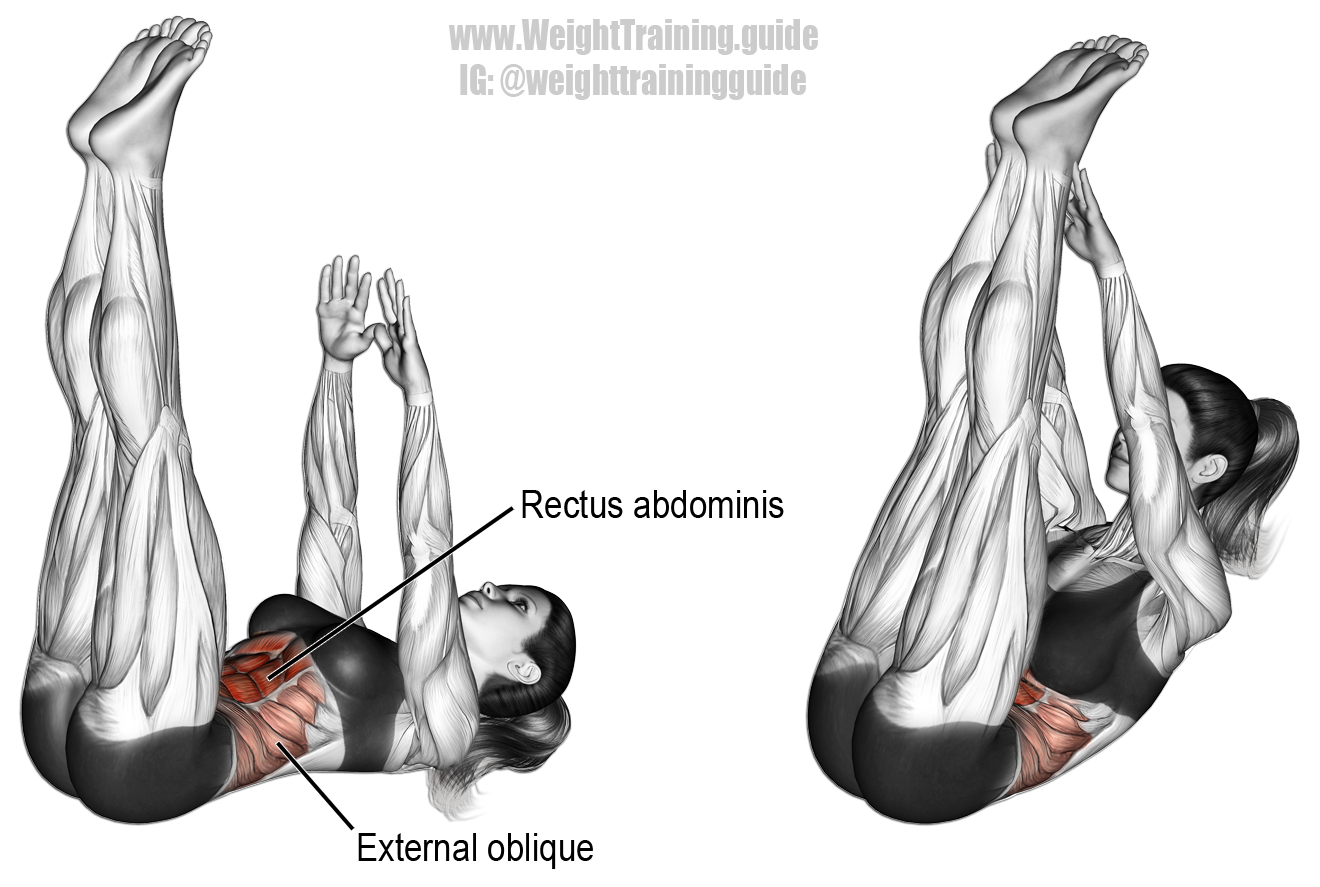 Vertical Leg Crunch Targets Your Rectus Abdominis Your Internal