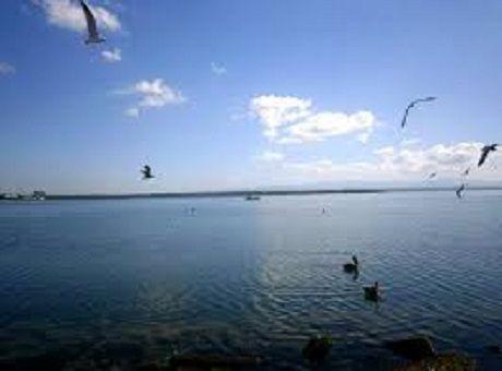 #Debaten experiencias ambientales científicos de Cienfuegos y Estados Unidos - Radio Ciudad Del Mar: Radio Ciudad Del Mar Debaten…