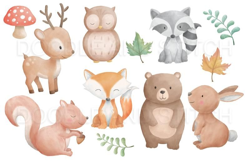 Woodland Animals Watercolor Clipart Forest Animal Clip Art Etsy Forest Animals Illustration Watercolor Animals Woodland Animal Prints
