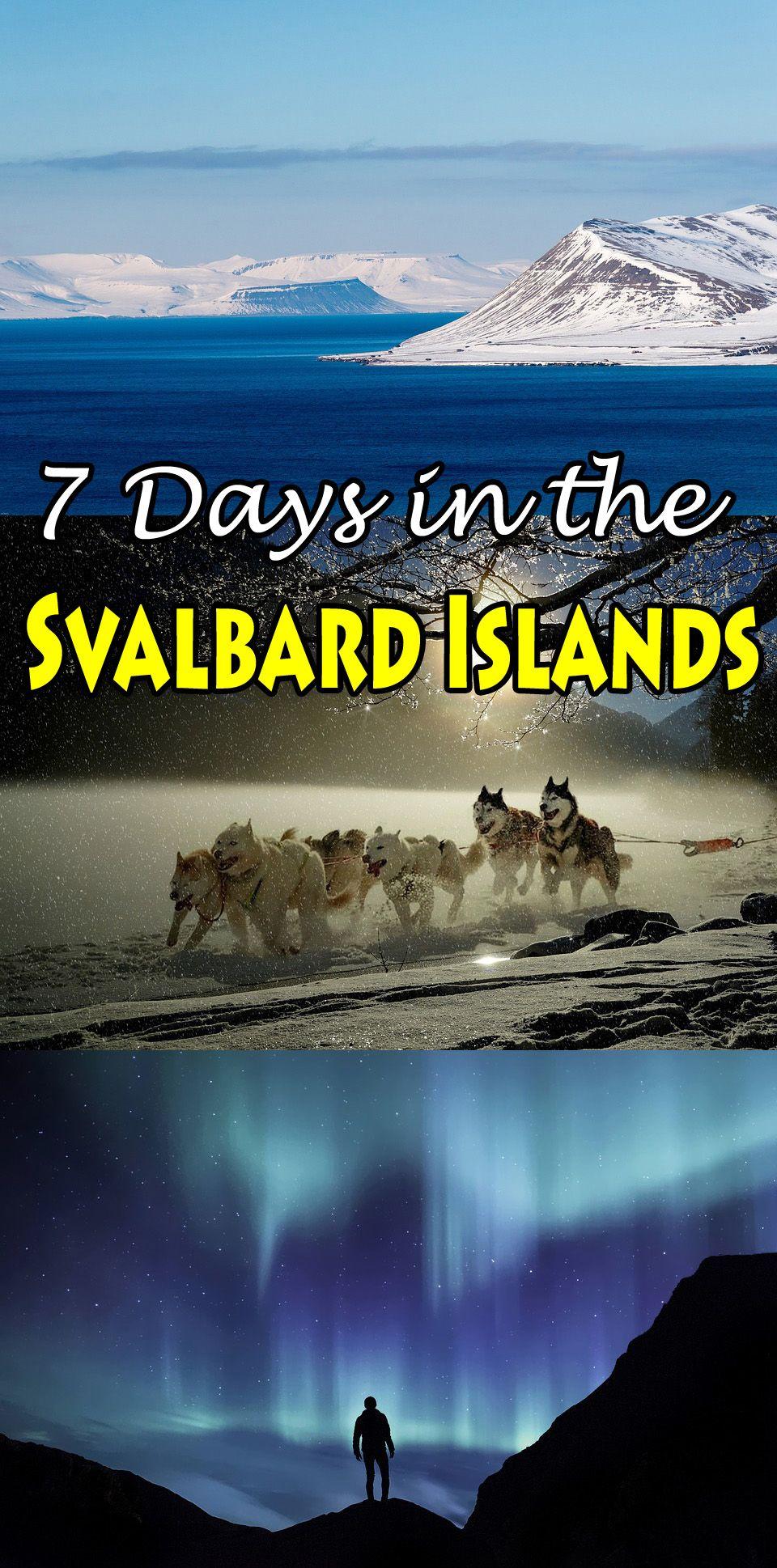 What do Do in Norway's northernmost archipelago. http://bbqboy.net/seven-days-in-svalbard/ #norway #svalbard