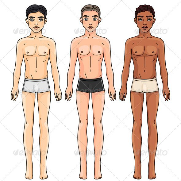 Men from Different Ethnic Groups in Underwear | Body proportions ...