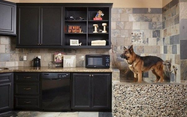 40 easy dog wash station ideas at home laundry rooms basements 40 easy dog wash area ideas 11 solutioingenieria Image collections