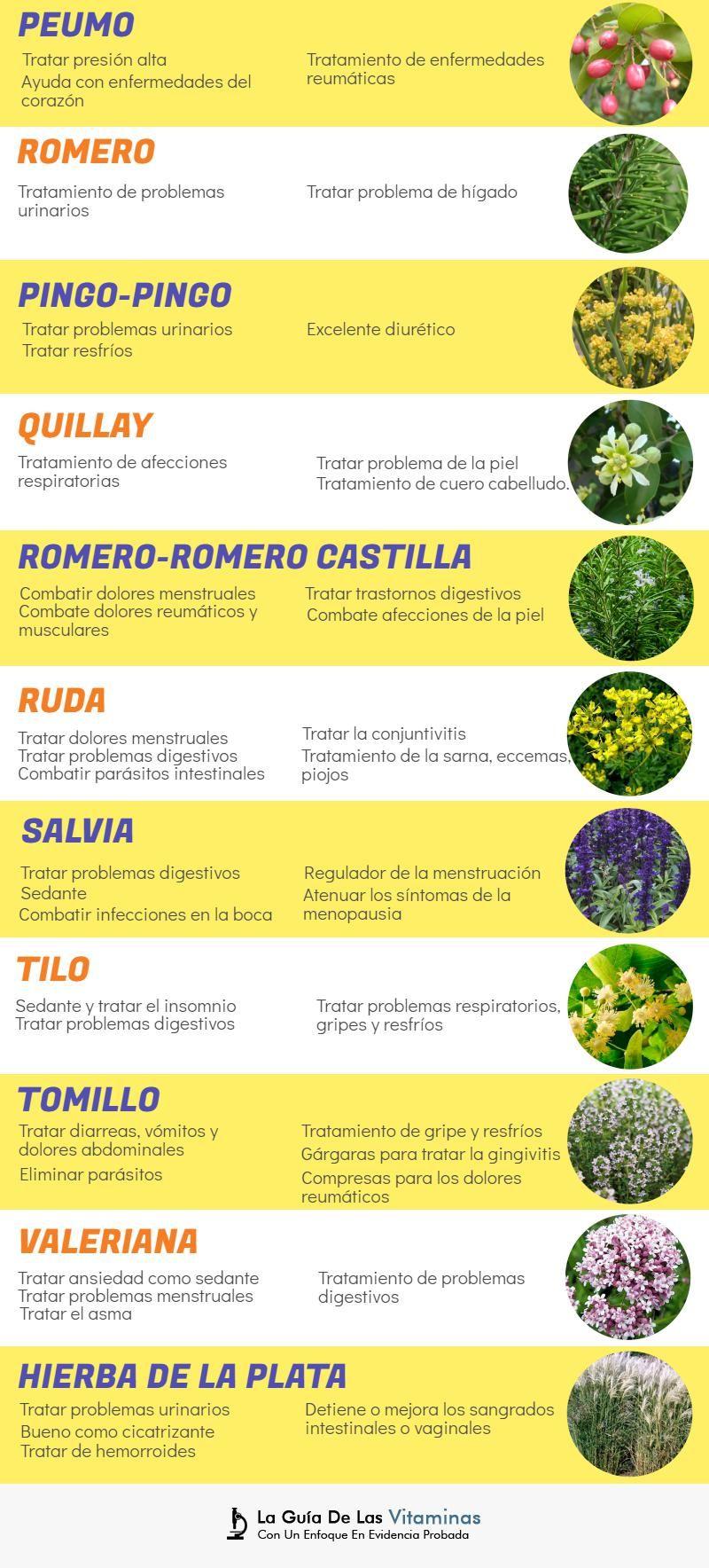 Resultado De Imagen Para 10 Plantas Medicinales Que Utilizaba Con