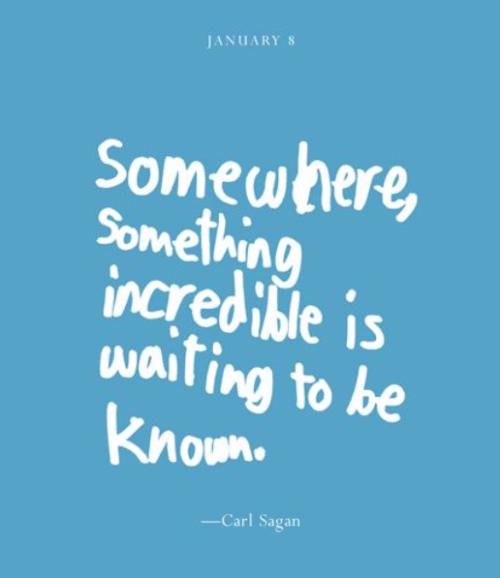 Wonder Quotes