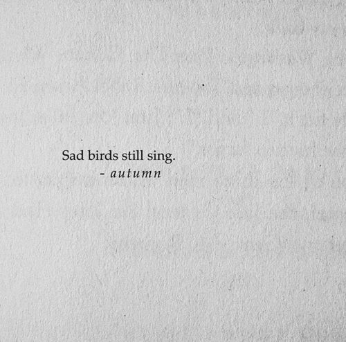 Sad bird shared by S. on We Heart It