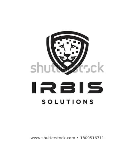 Flat Black Leopard Face In Geometric Shield Solution Shape Logo Icon Vector Template Leopard Face Pet Logo Design Logo Icons