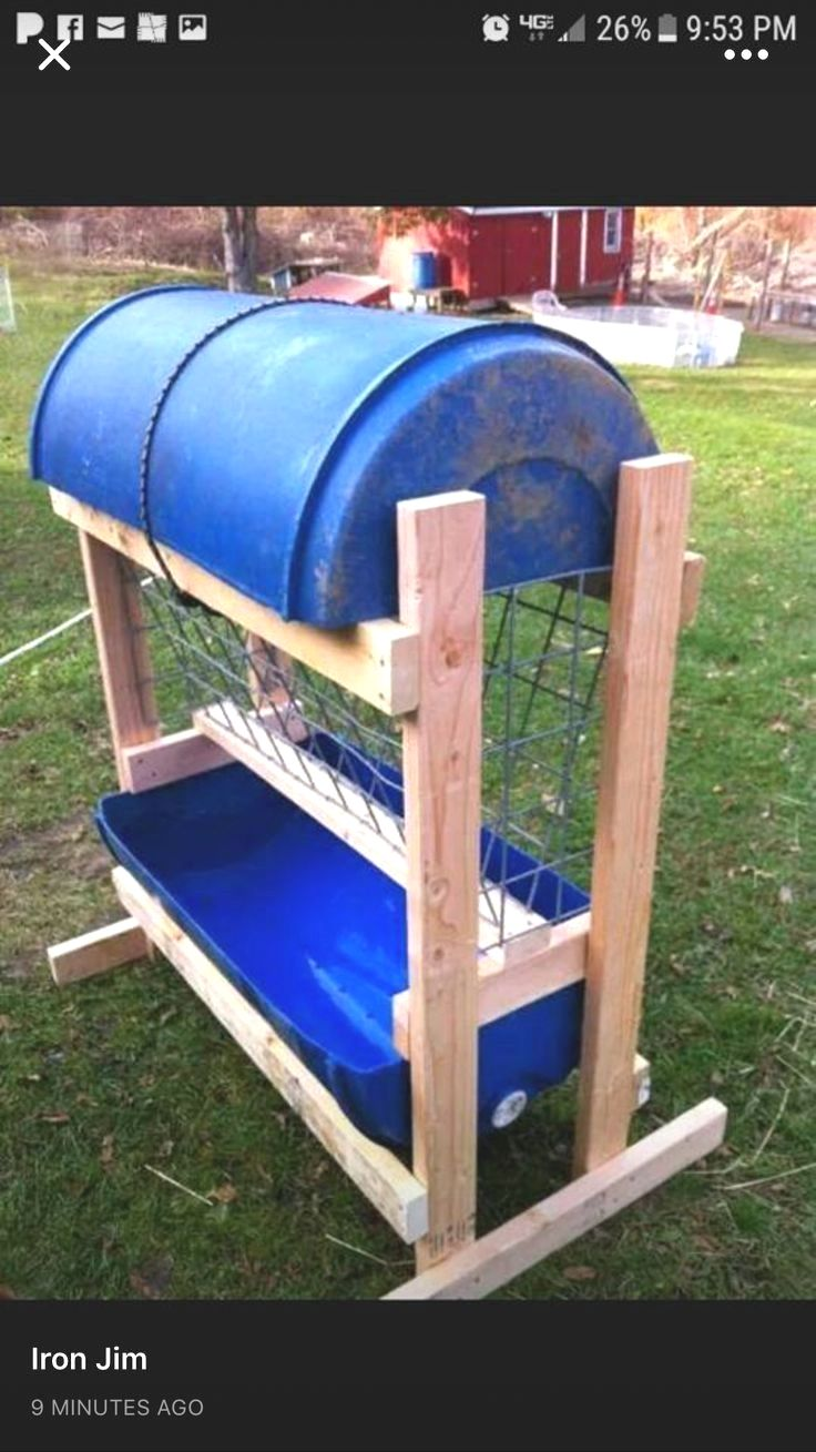 Homemade Goat Cheese Feed Soap Etta Milk Treats Food Hay Rack For Goats