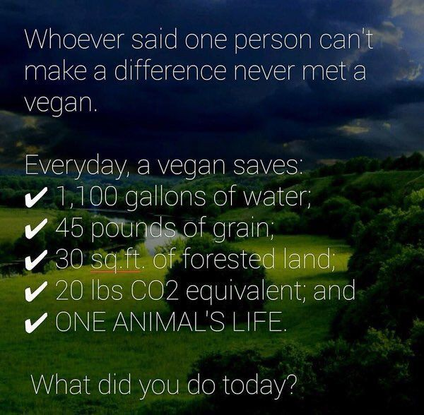 Image result for vegan make a difference