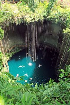 Cenote, near Chichén Itzá, Mexico. This was my view because it freaked me out to swim in a big hole with a underground tunnel. I felt like I would get sucked down. LOL