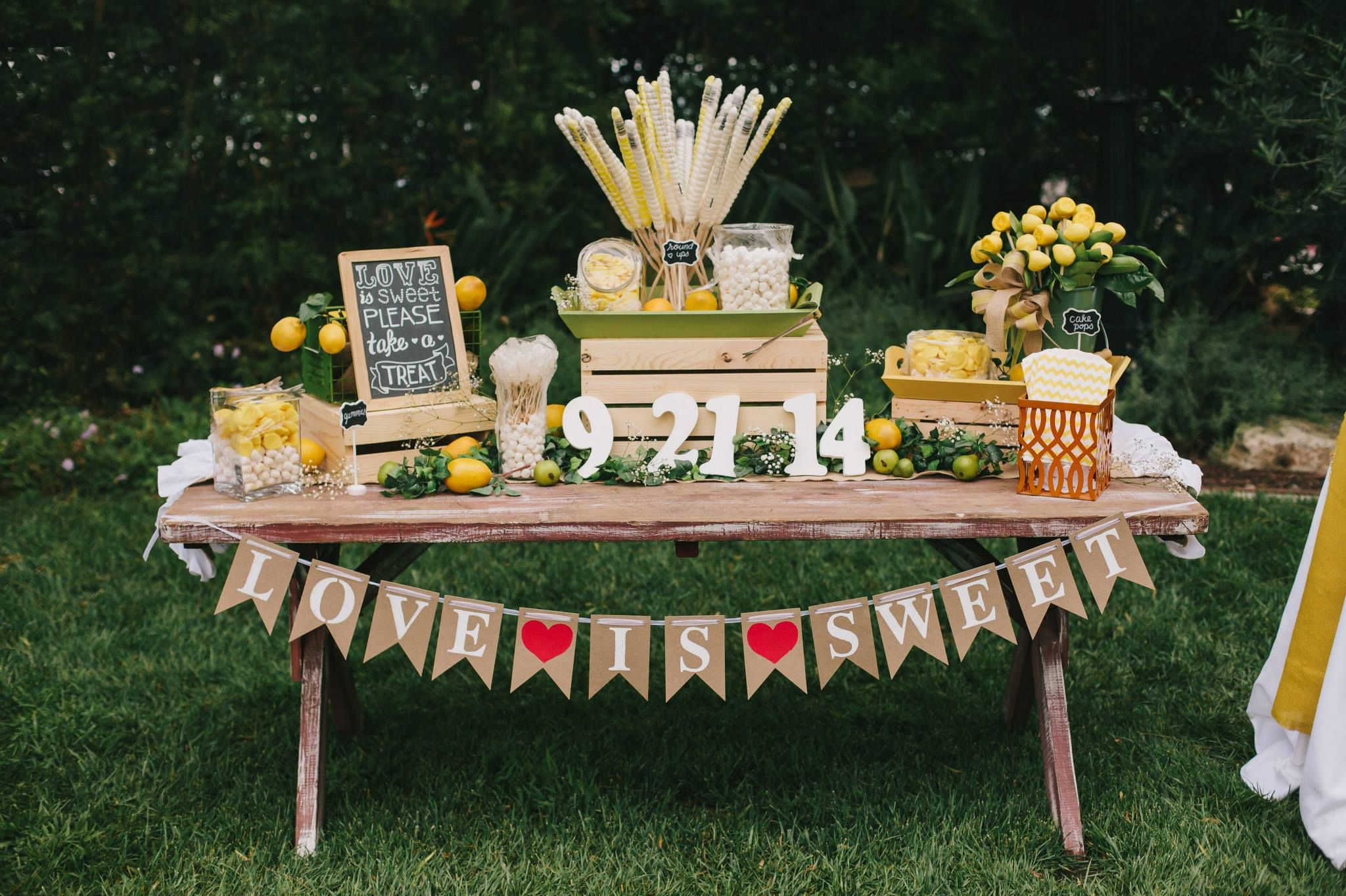 Image Result For Picnic Table Wedding Picnic Table Wedding