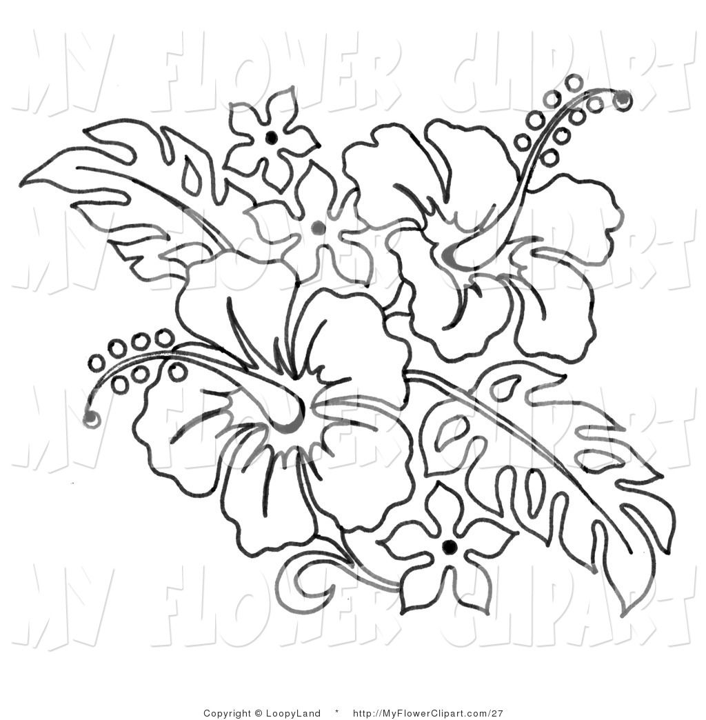 Use The Form Below To Delete This Black And White Hawaiian Flowers Clip Art Image From Our Index