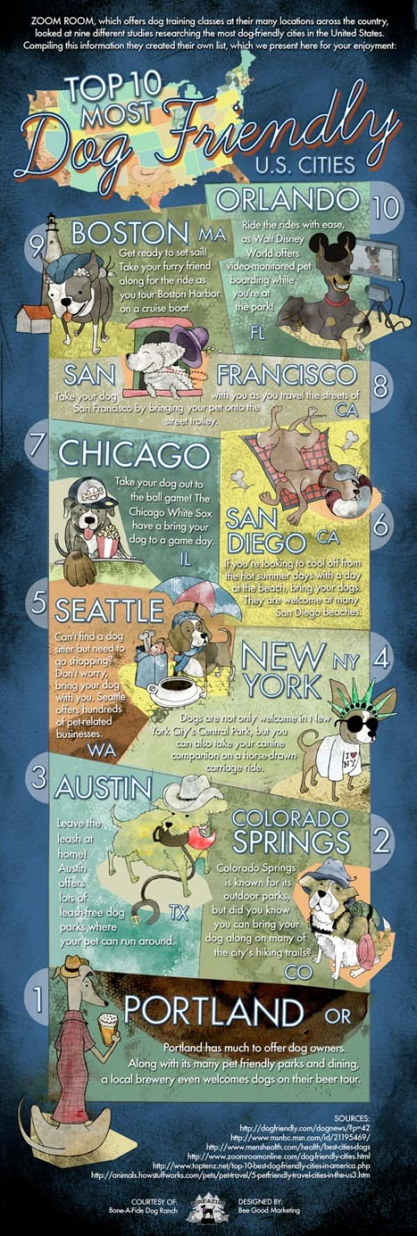 Seattle Loves Dogs And Dogs Love Seattle Dog Friendly Cities