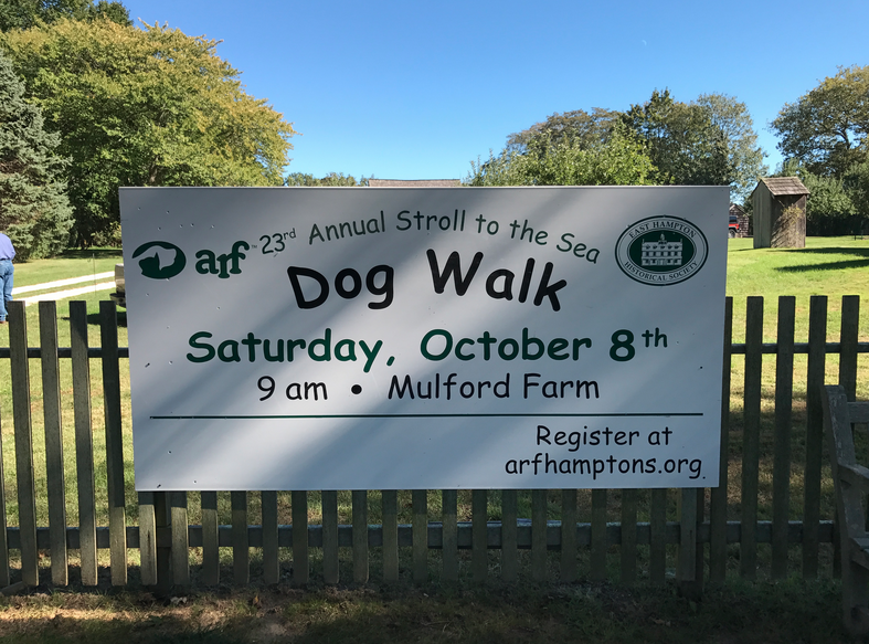 On Saturday, October 8, 2016 Full Fathom joined hundreds of dog-owners and several other wonderful