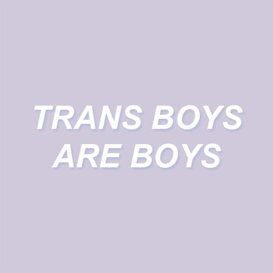 #lgbt #trans #equality