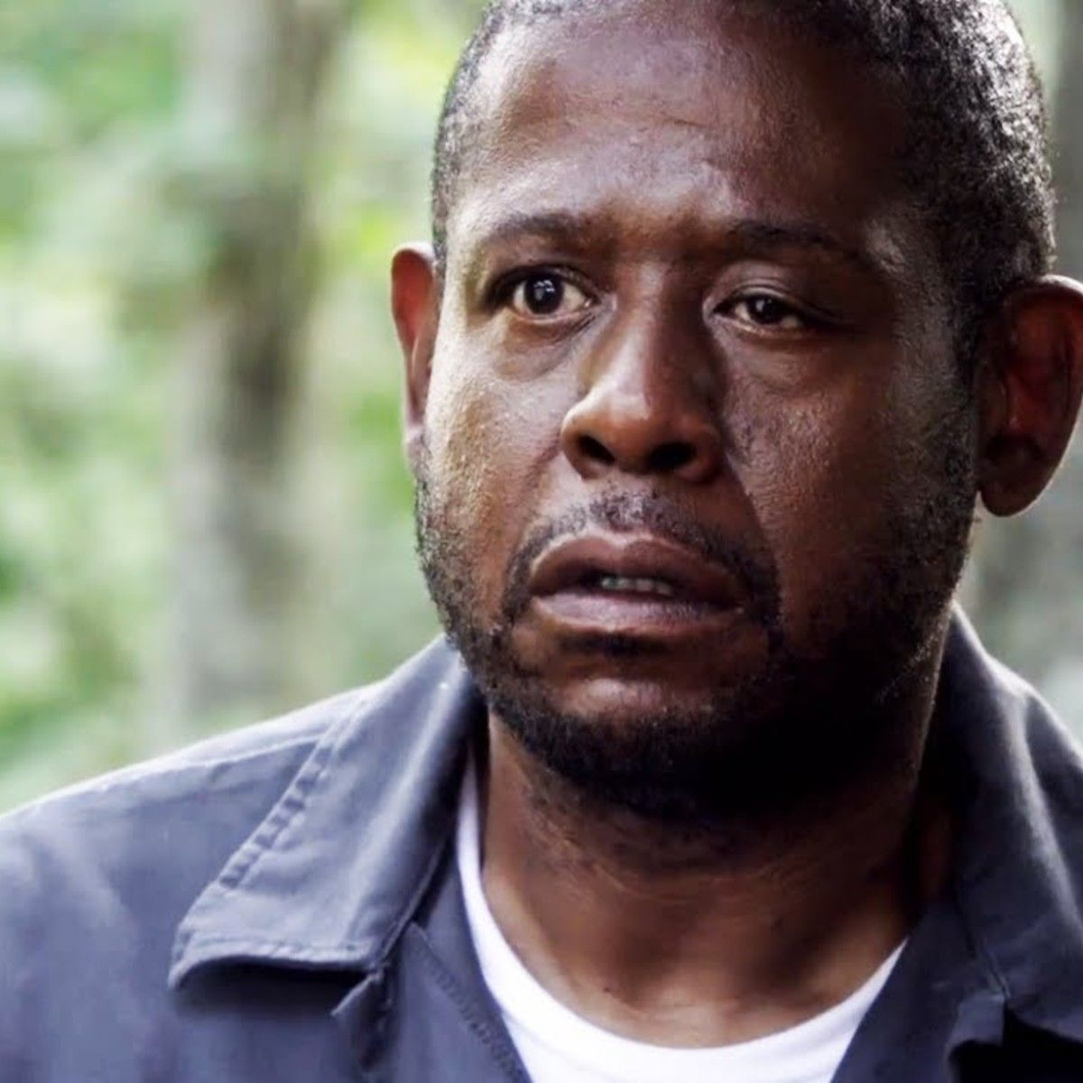 Image result for forest whitaker | Forest whitaker, Forest ...