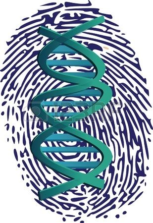 Huella digital con el símbolo del ADN en su interior. Foto de archivo.