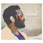Albumcheck | The Colors of Hope von Fetsum