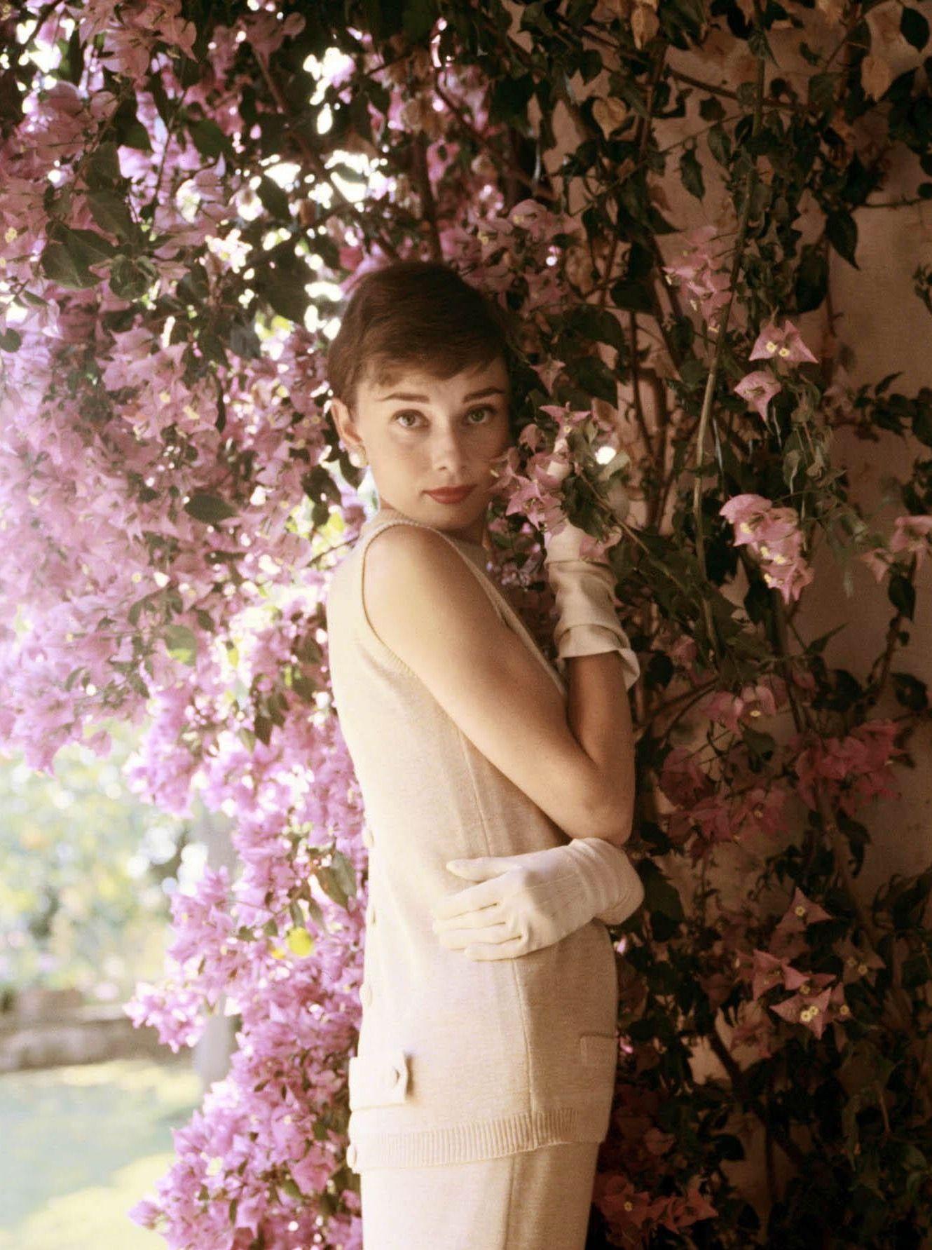 61X91.5cm Audrey Hepburn Pretty in Pink Art Poster Print 24X36