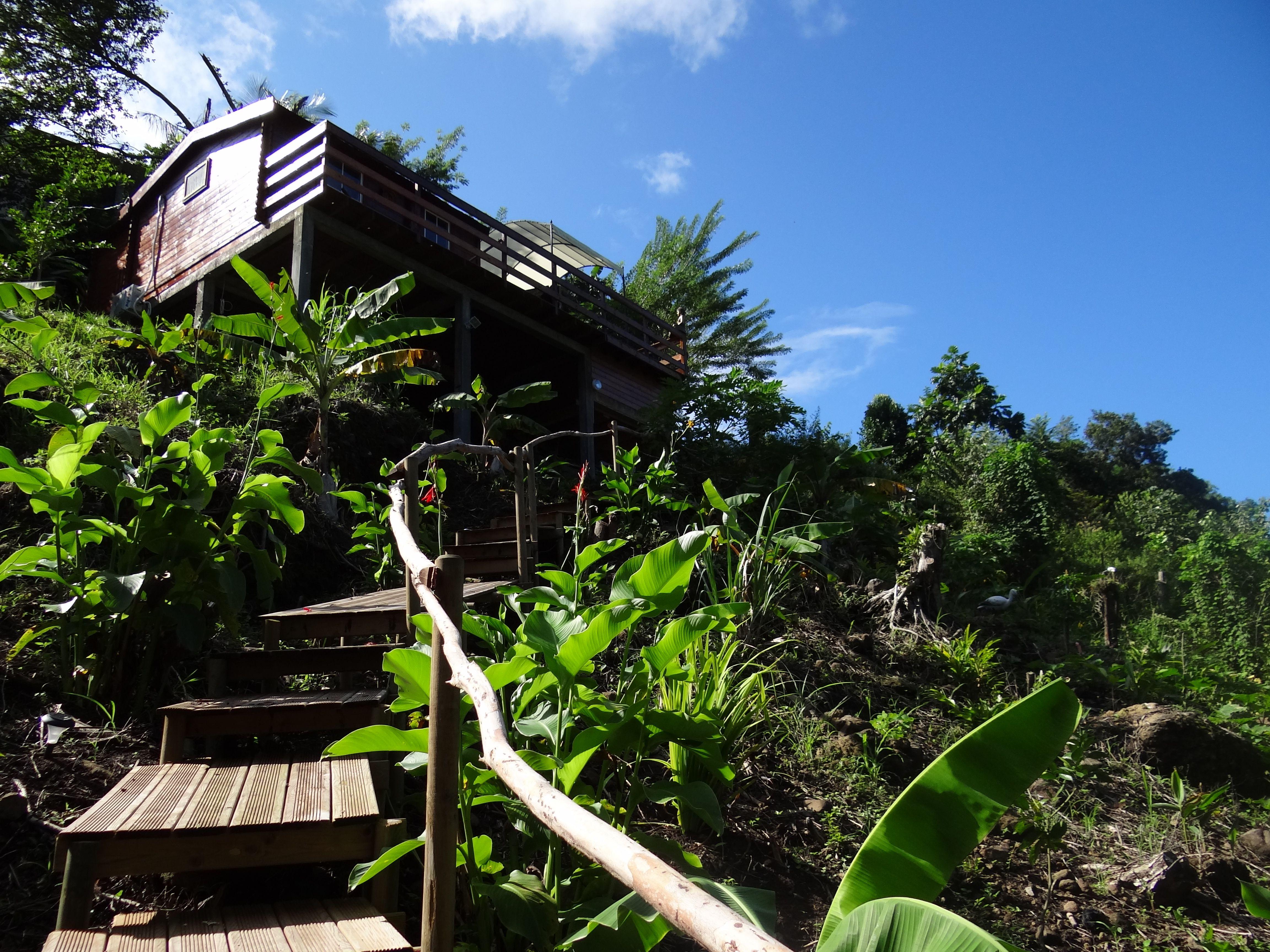 Sur les hauteurs de #GrandeAnses à #LesAnsesdArlet #Martinique